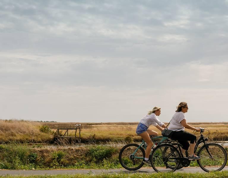 Radtouren auf den ca. 100 km langen Radwegen