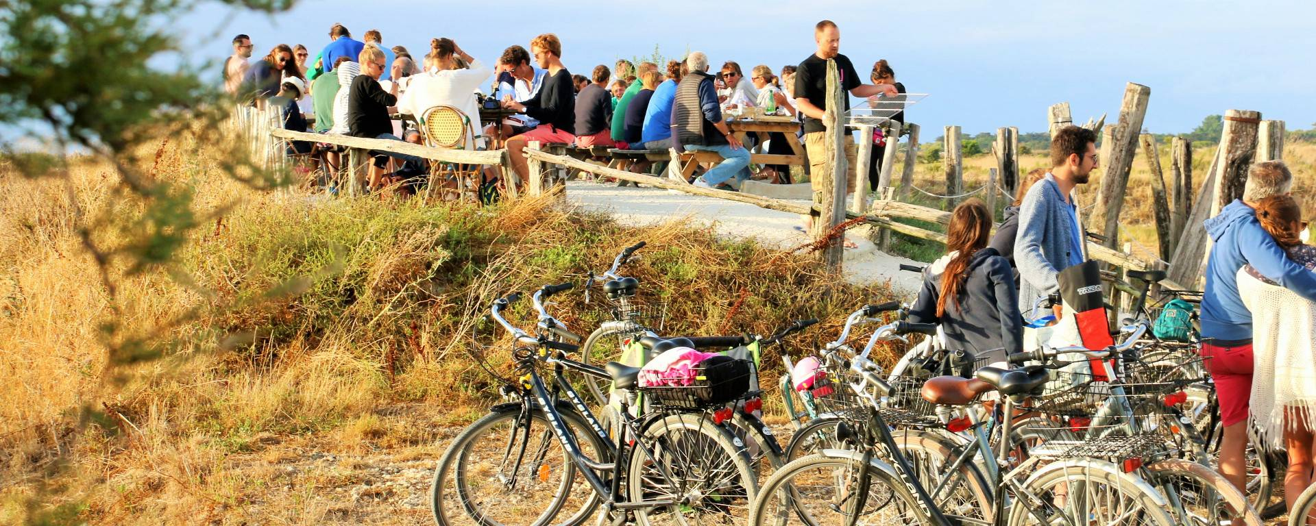 Le vélo à l'Île de Ré par Lesley Williamson