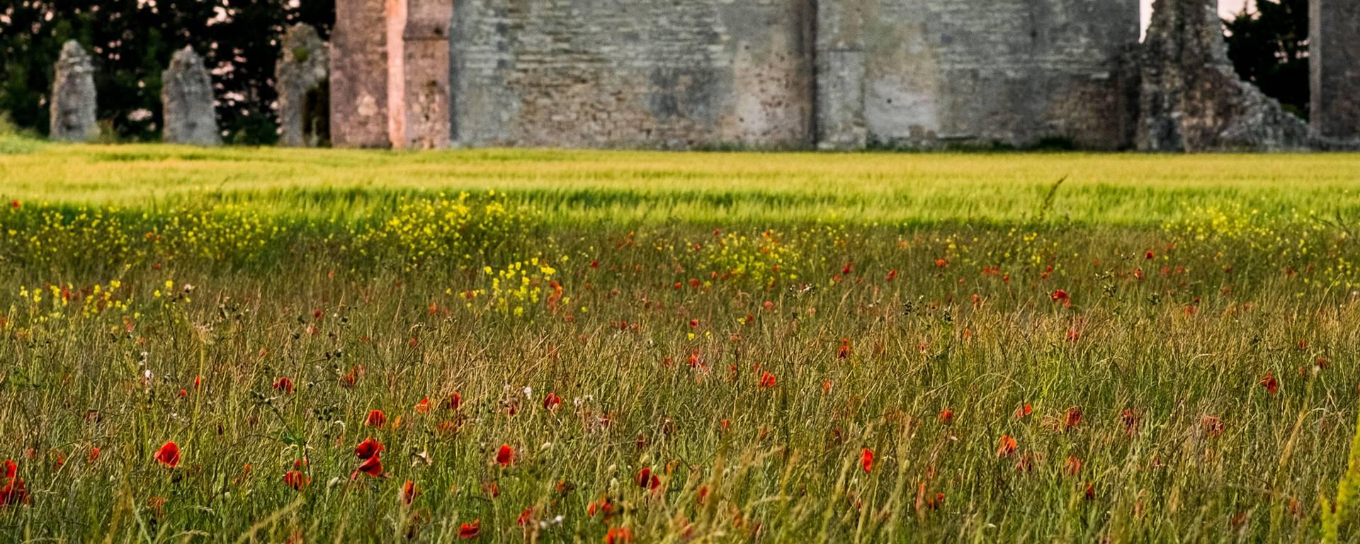 L'Abbaye des Châteliers par ©Yann-Werdefroy