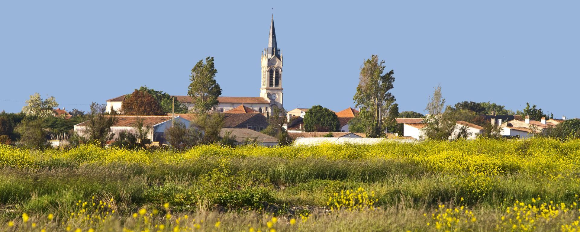 Église vue des marais