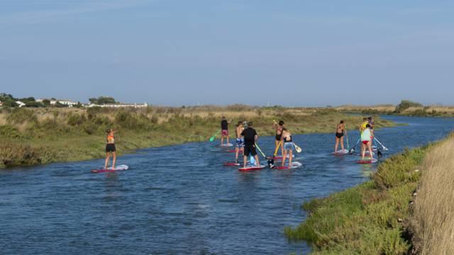 Promenade dans les marais en stand-up paddle