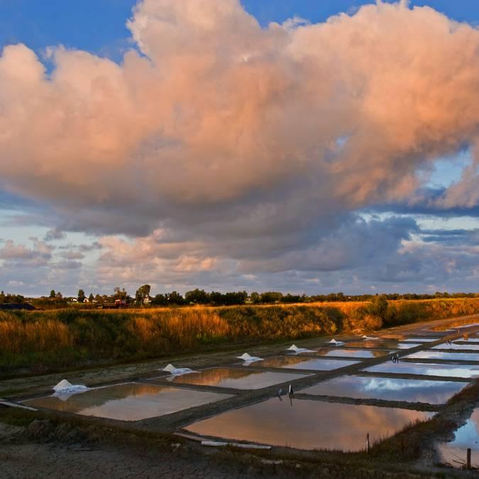 Die Salzgärten